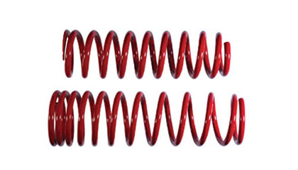 97-01 Hyundai Tiburon B+G Lowering Springs - Sports Spring  (Drop - Front:1-3/4 inch  Rear:1-3/4 inch)