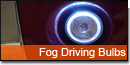 Fog and Driving Bulbs