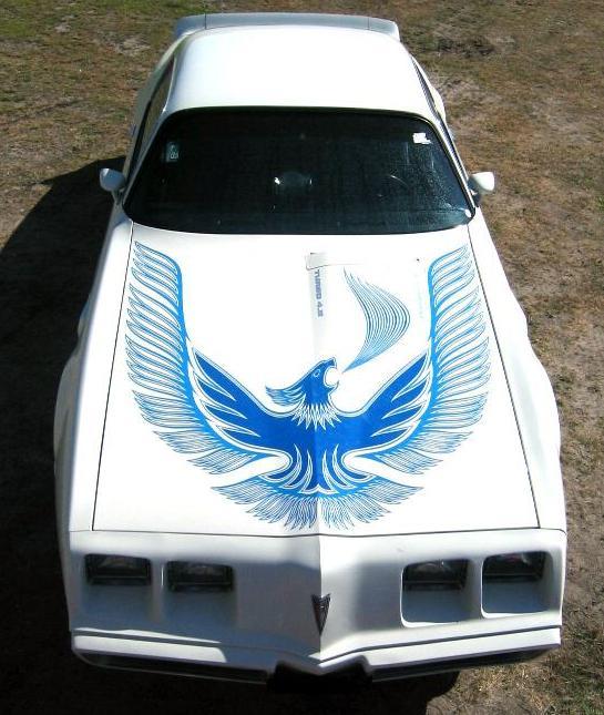 301 Turbo Tech