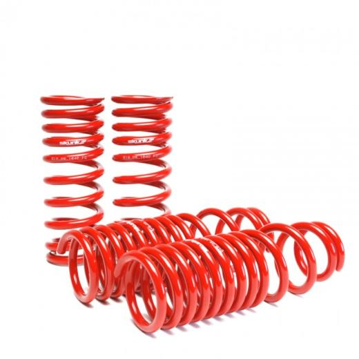 01-04 Civic Skunk2 Lowering Springs