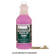 Not Applicable Lane's Auto Detail Spray - Touch-Up Shine (16oz)