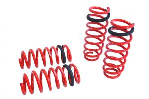 E60 Fits BMW 5 SERIES 04-10 W//O SELF-LEVELING Traction-S Lowering Springs Set