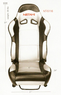 2001-2003 Honda Civic Netami Racing Seats - Renegade (Silver/Black)