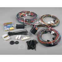 1969-1970 Ford Mustang Base,  Boss 429,  Grande,  Mach 1 Painless 14 Circuit (Wiring Harness)